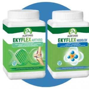 EKYFLEX ARTHRO 1 KG + EKYFLEX NODOLOX 600g