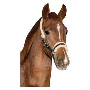 Ohlávka hříběcí s koníky a kožíškem černá